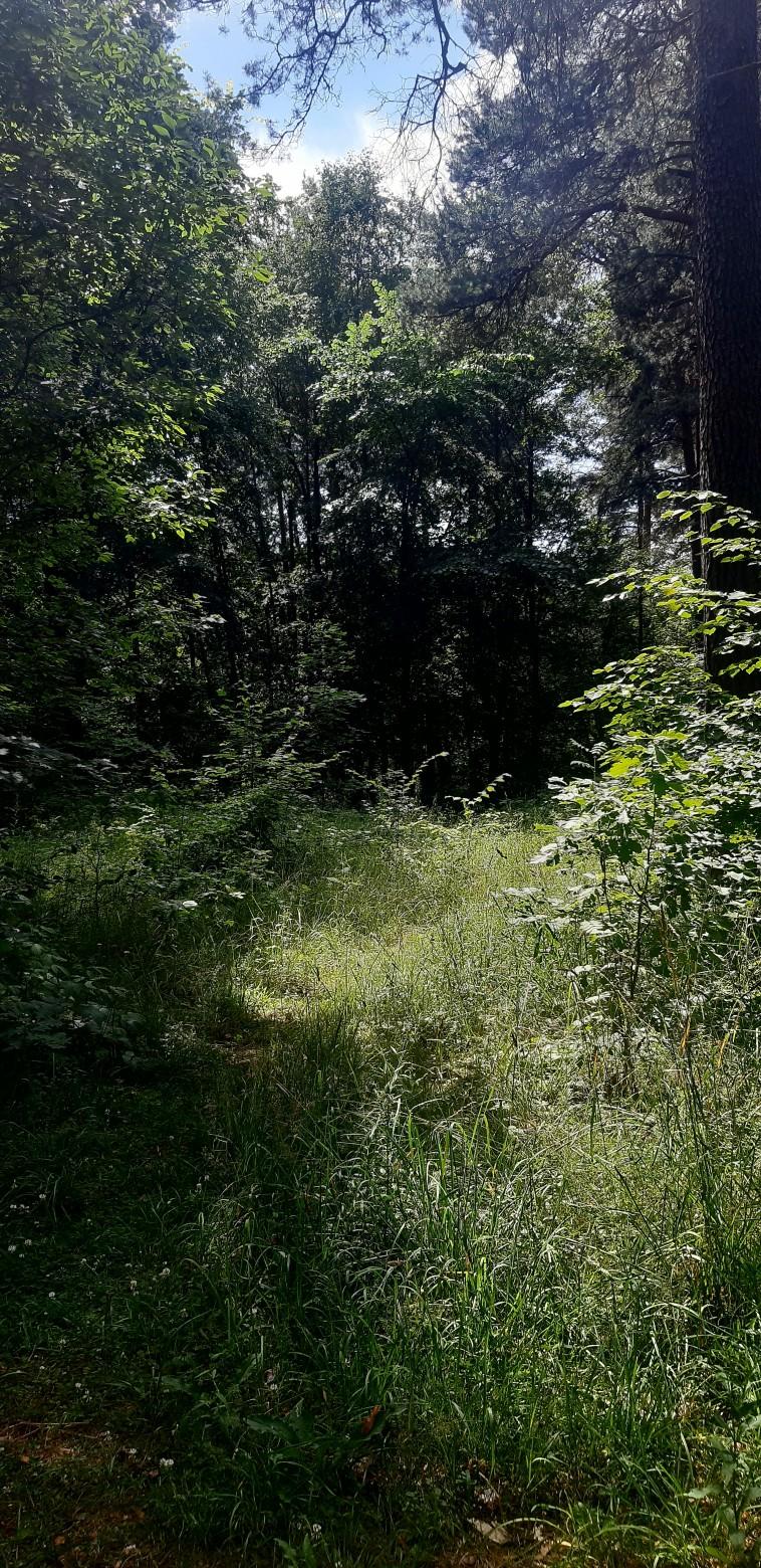 Meklēju haltūras Valmierā